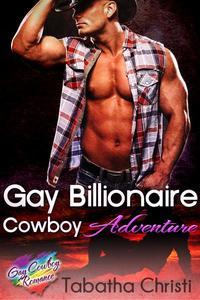 Gay Billionaire Cowboy Adventure