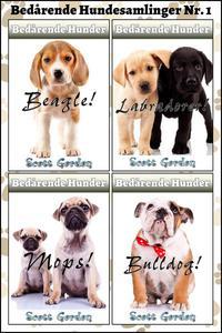 Bedårende Hundesamlinger Nr. 1