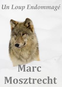 Un Loup Endommagé