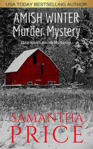 Amish Winter Murder Mystery