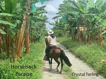 Horseback Escape