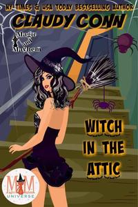 Witch in the Attic: Magic and Mayhem Universe