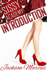 Sissy Academy Introduction