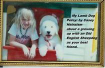 My Lamb Dog Petey