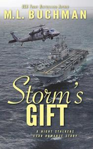 Storm's Gift: a military romantic suspense story