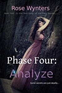 Phase Four: Analyze