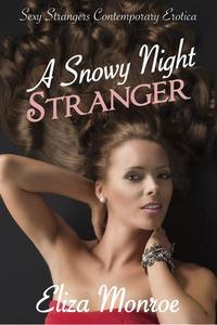 A Snowy Night Stranger
