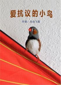 爱抗议的小鸟