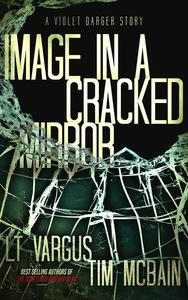 Image in a Cracked Mirror