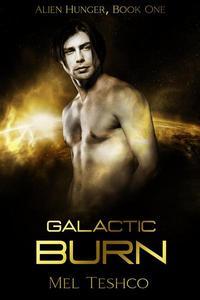Galactic Burn: A Scifi Alien Romance