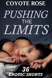 Pushing The Limits: Erotica Big Bundle