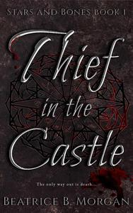 Thief in the Castle