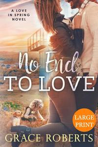 No End To Love (Large Print Edition)