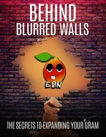 Behind Blurred Walls: Secrets to Expanding Your 'Gram