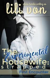 The Experimental Housewife: Strapped