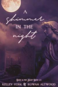 A Shimmer in the Night