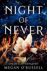 Night of Never