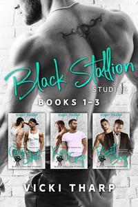 Black Stallion Studios Books 1-3