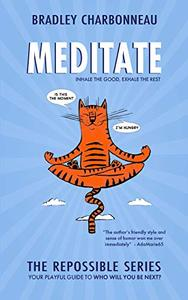 Meditate: When you're ready to take your success to the next level