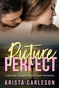 Picture Perfect: A Second Chance Secret Baby Romance