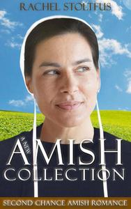 A New Amish Collection: Second Chance Amish Romance Books 1-3
