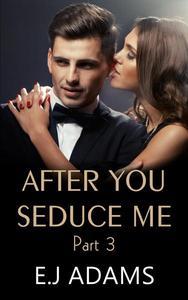 After You Seduce Me - Part 3