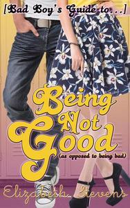 [Bad Boy's Guide to...] Being Not Good