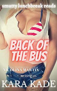 Back of the Bus: An Accidental Meeting Steamy Short Story
