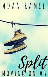 Split: A Lesfic Drama