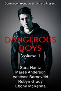 Dangerous Boys Volume 1: Down under Young Adult Authors present