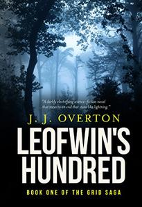 Leofwin's Hundred: Book one of The Grid Saga