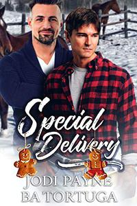 Special Delivery: A Wrecked Holiday Novel