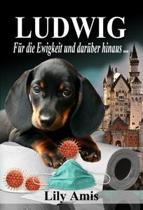 Ludwig - Für die Ewigkeit und darüber hinaus ...