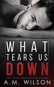 What Tears Us Down: A Single Dad Standalone Romance