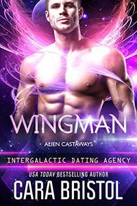Wingman: Alien Castaways 2