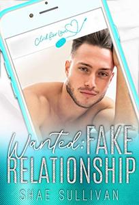 Wanted: Fake Relationship: A Stand Alone Navy SEAL Romance