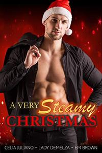 A Very Steamy Christmas: Set of 12 Holiday Short Stories