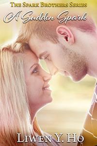A Sudden Spark: A Christian Contemporary Romance
