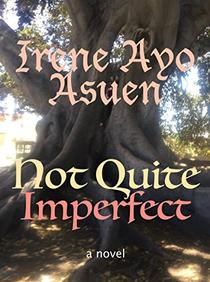 Not Quite Imperfect: a novel