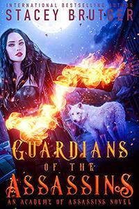 Guardians of the Assassins