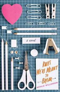 Rules We're Meant to Break: A Novel