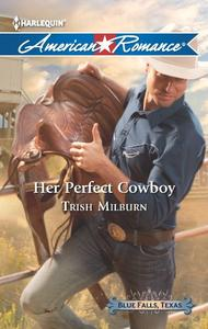 Her Perfect Cowboy: A Single Dad Romance