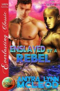 Enslaved by a Rebel [Sold! 2]
