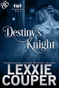 Destiny's Knight: A Fallen Angel Protector Paranormal Romantic Suspense Book